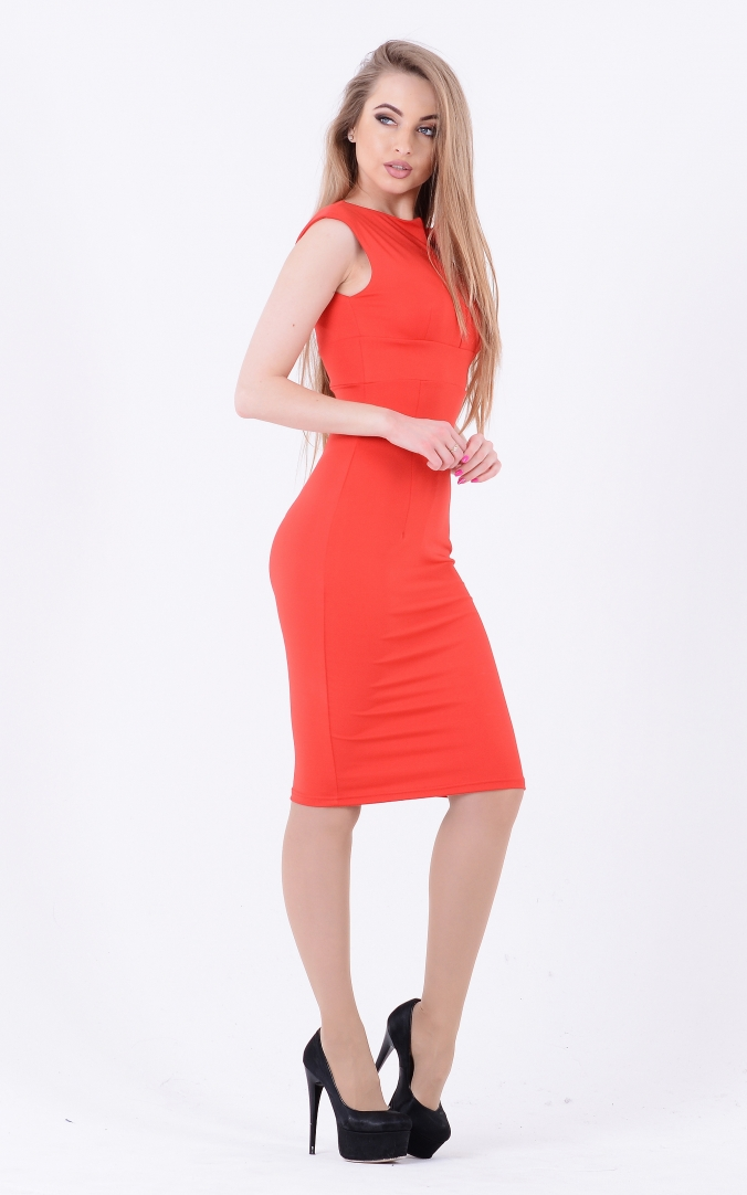 Laconic dress fitting (red)