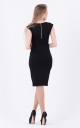 Laconic dress fitting (black)
